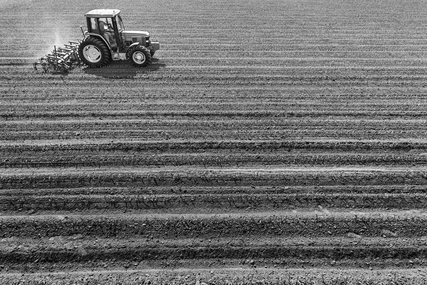 Tractor while farming.